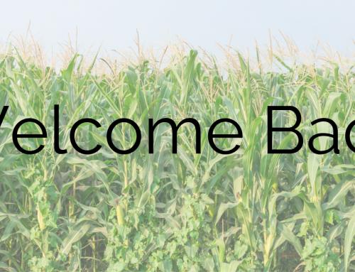 8/2/2019 – Welcome Back!